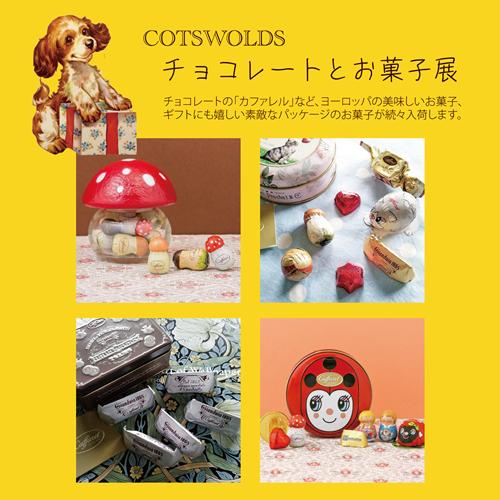 チョコレートとお菓子展10月正方形.png